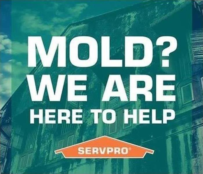Why SERVPRO MOLD? We are here to help