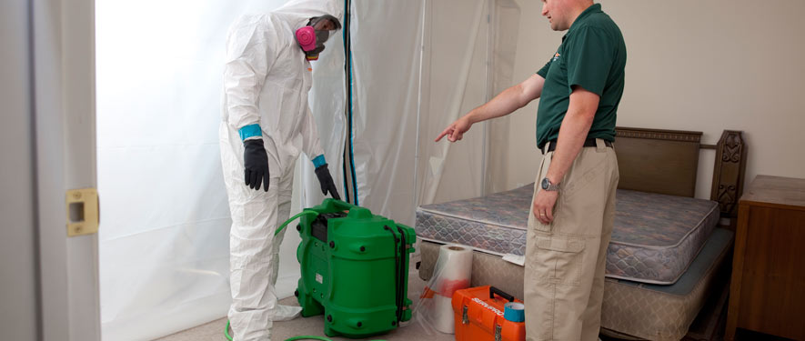 Riverside, CA mold removal process
